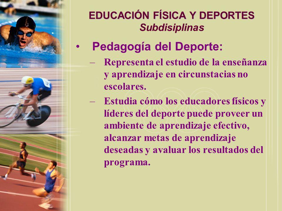 EDUCACIÓN FÍSICA Y DEPORTES EDUCACIÓN FÍSICA Y DEPORTES Subdisiplinas Actividad física adaptada: –Trabaja con la preparación de maestros y líderes del deporte para proveer programas y servicios para individuos con incapacidades.
