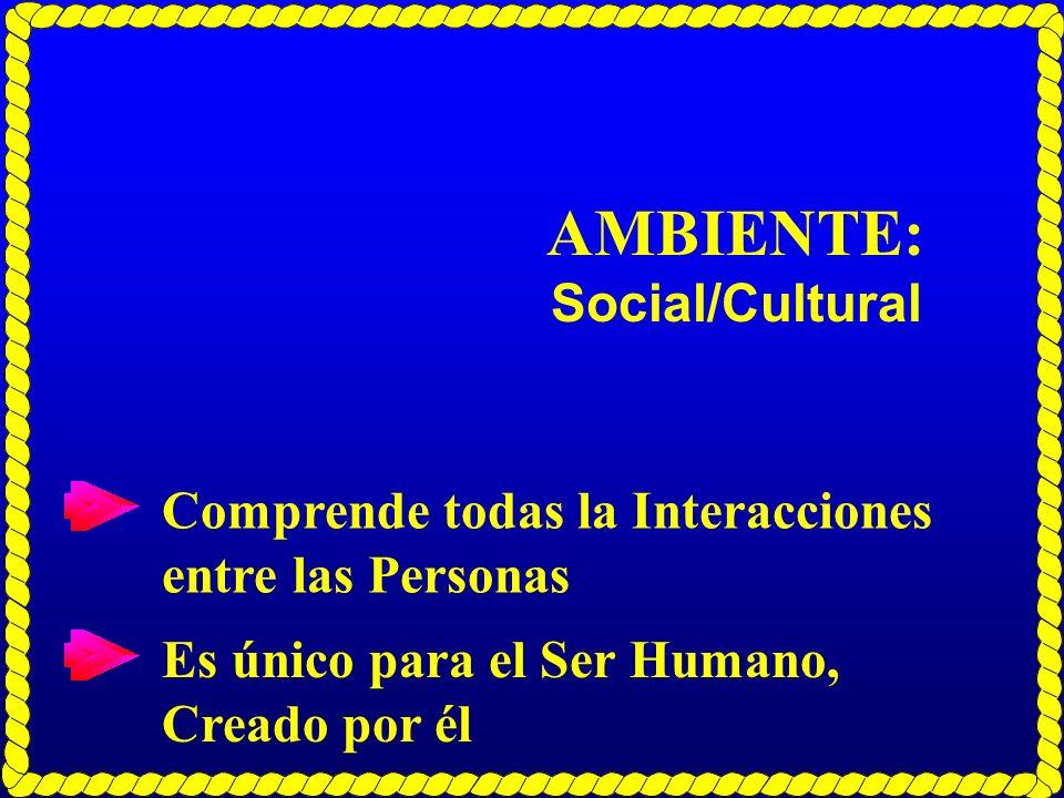 AMBIENTE: Social/Cultural Comprende todas la Interacciones entre las Personas Es único para el Ser Humano, Creado por él