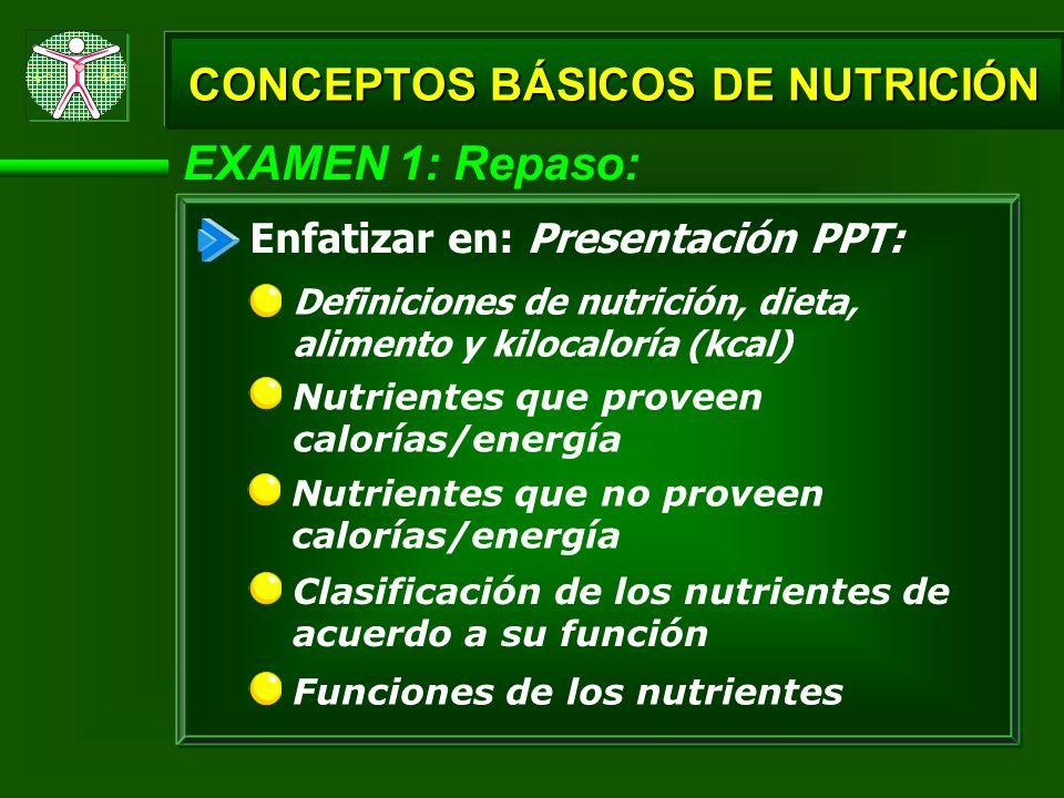 EXAMEN 1: Repaso: Nutrientes principales que contienen los cereales Los porcentajes en cuanto a la grasas poliinsaturadas, monoinsaturadas y saturadas para el aceite de coco, aceite de oliva y aceite de maní CONCEPTOS BÁSICOS DE NUTRICIÓN Tipos de nutrientes incluidos bajo las funciones energéticas, plásticas y reguladoras Enfatizar en: Presentación PPT: