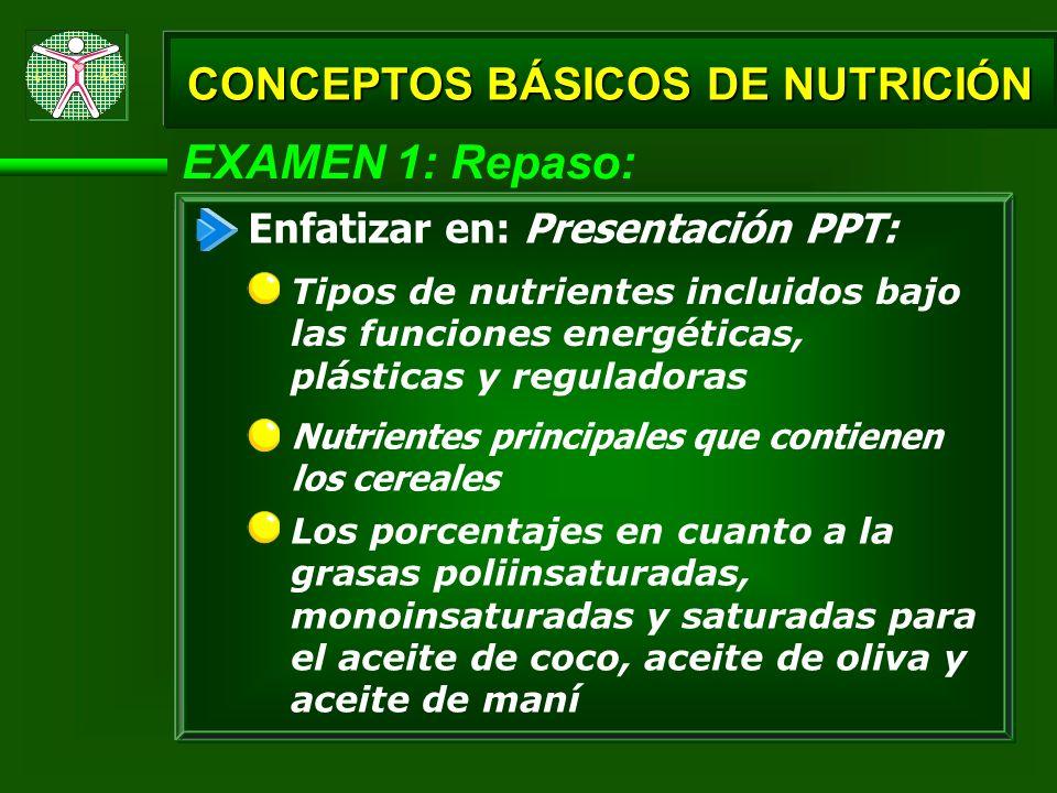 EXAMEN 1: Repaso - Pirámide Alimentaria: CONCEPTOS BÁSICOS DE NUTRICIÓN
