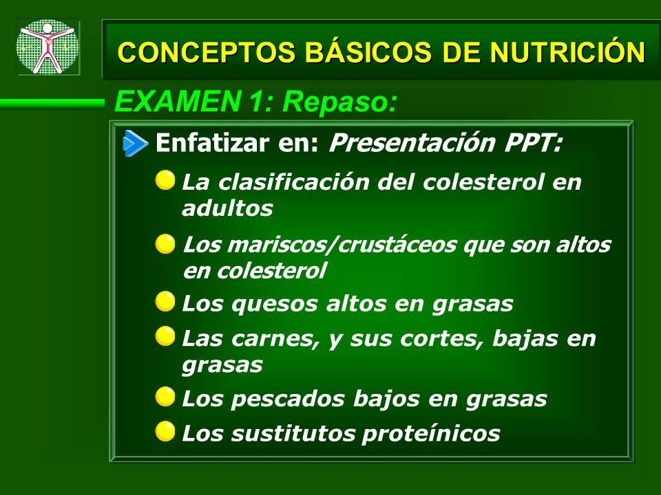 EXAMEN 1: Repaso: Los mariscos/crustáceos que son altos en colesterol Los quesos altos en grasas CONCEPTOS BÁSICOS DE NUTRICIÓN La clasificación del c