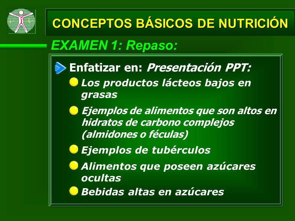 EXAMEN 1: Repaso: Ejemplos de alimentos que son altos en hidratos de carbono complejos (almidones o féculas) Ejemplos de tubérculos CONCEPTOS BÁSICOS