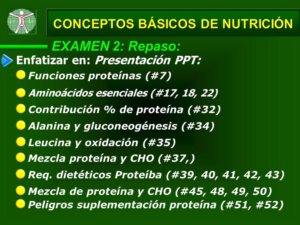 EXAMEN 2: Repaso: Aminoácidos esenciales (#17, 18, 22) Contribución % de proteína (#32) CONCEPTOS BÁSICOS DE NUTRICIÓN Funciones proteínas (#7) Alanin