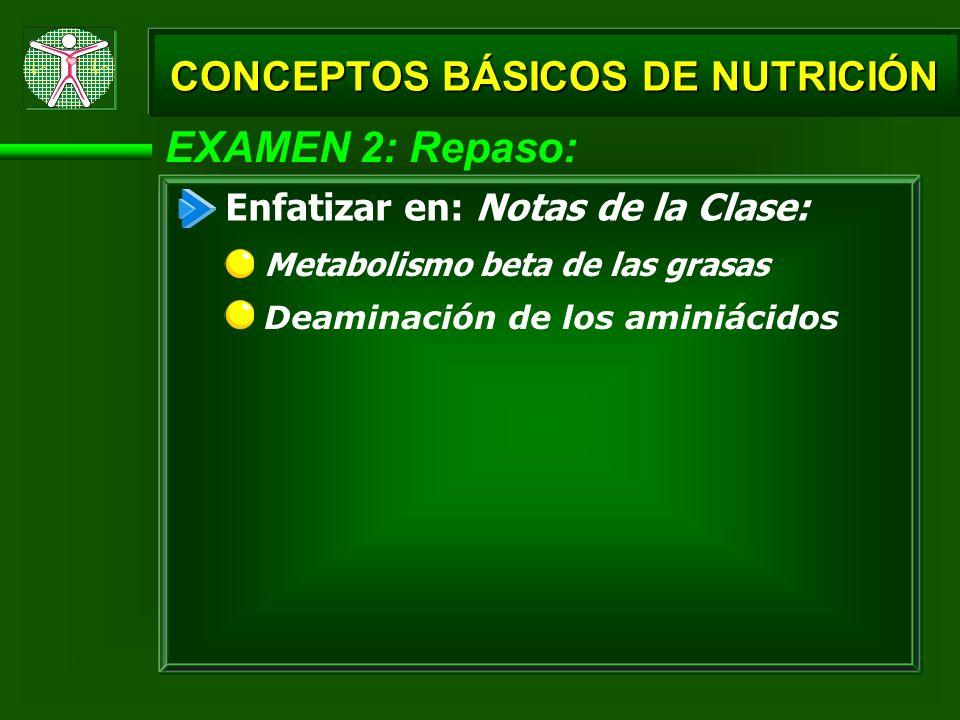 EXAMEN 2: Repaso: CONCEPTOS BÁSICOS DE NUTRICIÓN Enfatizar en: Notas de la Clase: Metabolismo beta de las grasas Deaminación de los aminiácidos