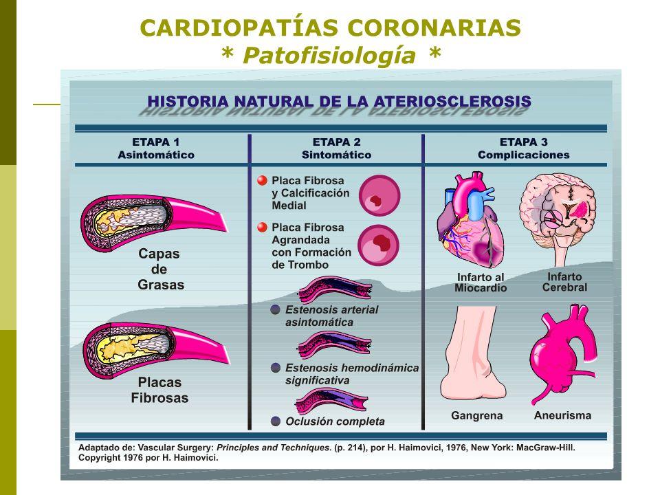 - Proceso de Aterosclerosis: Paredes Arteriales - CARDIOPATÍAS CORONARIAS * Patofisiología* - Proceso de Aterosclerosis: Paredes Arteriales -
