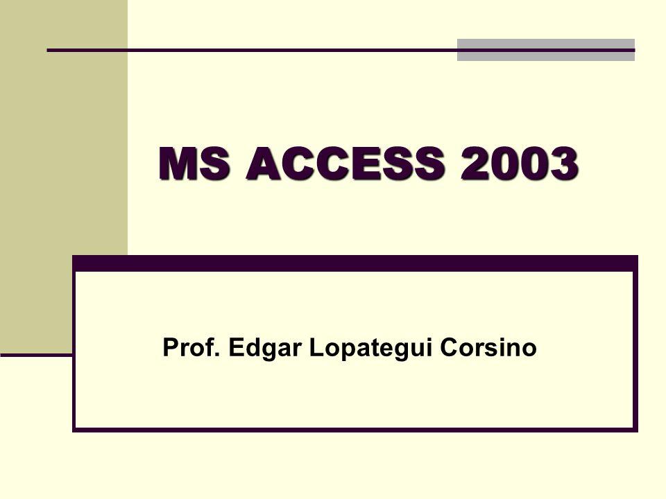 MS ACCESS 2003 Prof. Edgar Lopategui Corsino