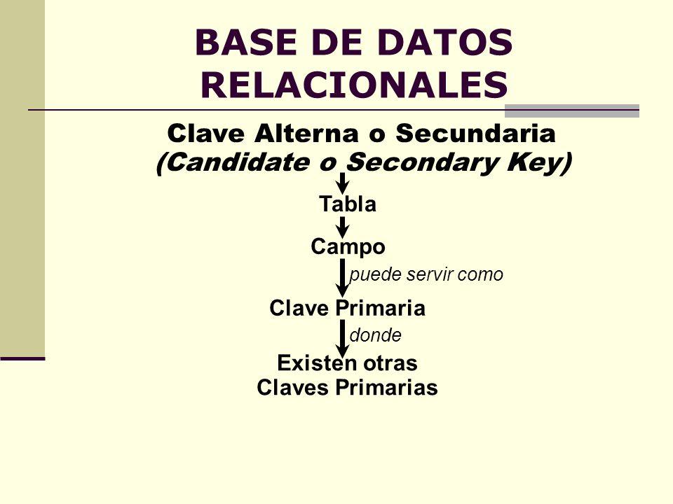 BASE DE DATOS RELACIONALES Clave Alterna o Secundaria (Candidate o Secondary Key) Clave Primaria puede servir como Campo donde Existen otras Claves Pr