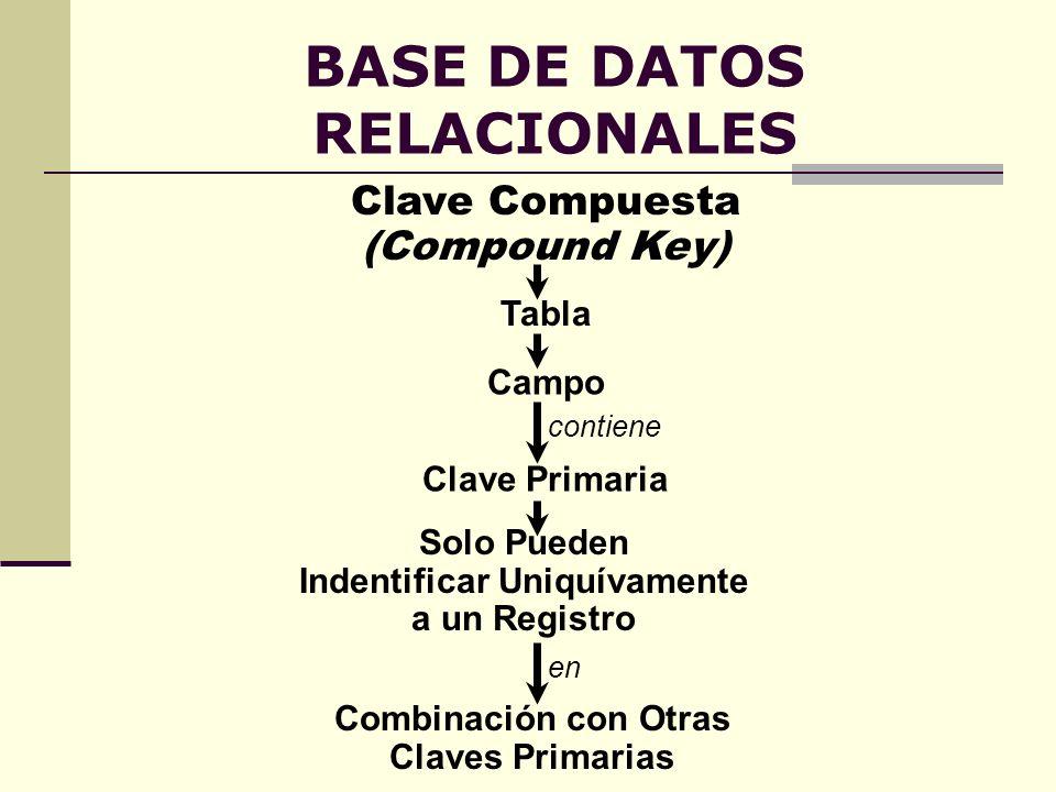 BASE DE DATOS RELACIONALES Clave Compuesta (Compound Key) Clave Primaria contiene Campo Tabla Solo Pueden Indentificar Uniquívamente a un Registro Com