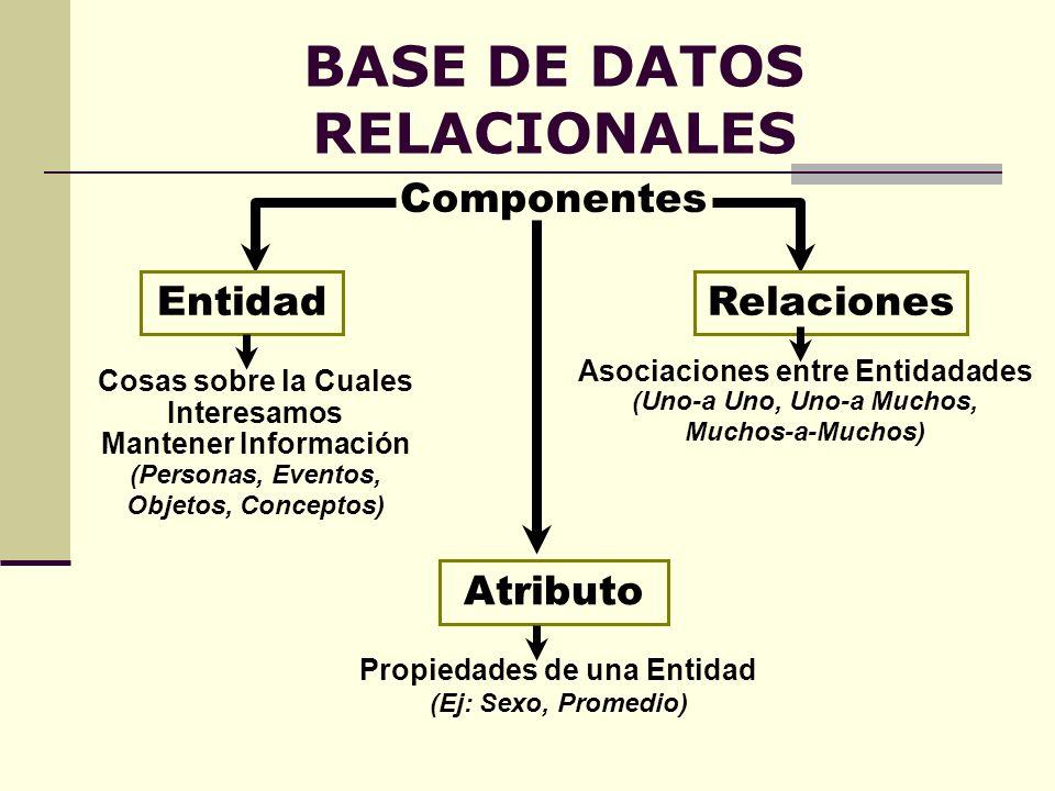 BASE DE DATOS RELACIONALES Componentes EntidadRelaciones Atributo Cosas sobre la Cuales Interesamos Mantener Información (Personas, Eventos, Objetos,