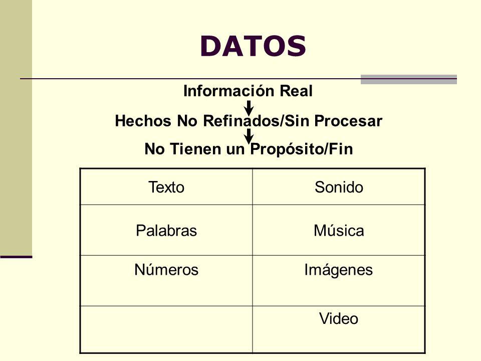 DATOS Información Real TextoSonido PalabrasMúsica NúmerosImágenes Video Hechos No Refinados/Sin Procesar No Tienen un Propósito/Fin