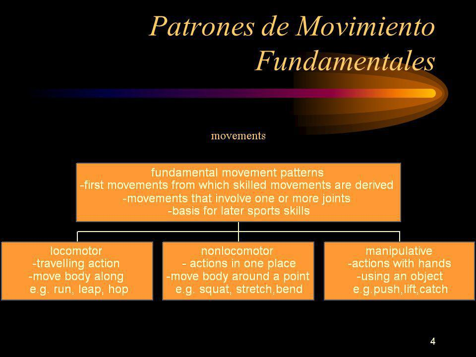 4 Patrones de Movimiento Fundamentales