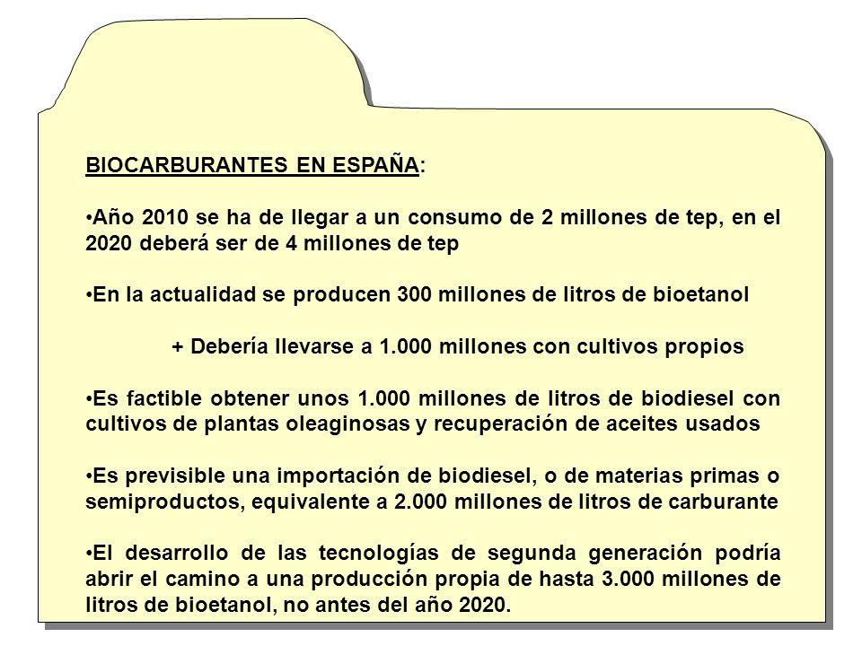 Los biocarburantes han de atender dos demandas básicas: + Gasolina.- Viene de vegetales con azúcares + Diesel.- Se obtienen de vegetales con aceites Los biocarburantes se pueden utilizar en mezclas + Como carburante único demanda adaptaciones en los vehículos La caña de azúcar la remolacha y el maíz dan bietanol con alta productividad La palma africana es el cultivo más productivo para obtener biodiesel