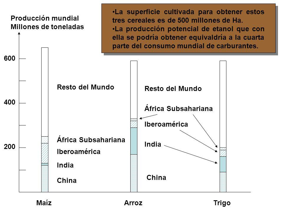 Los monocultivos agreden a la biodiversidad.-Cosecha de soja.- Argentina