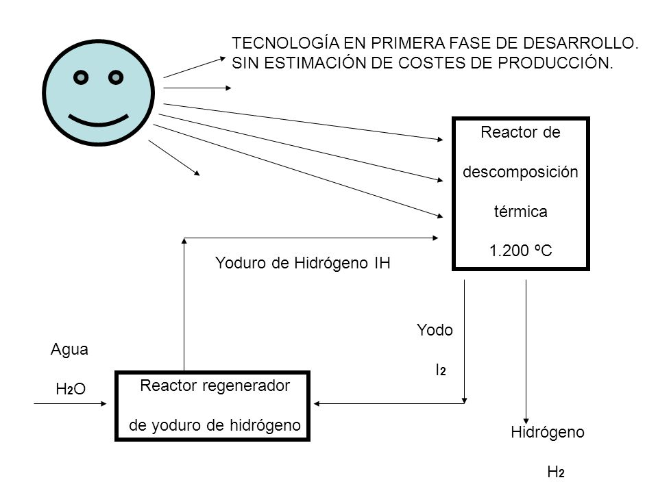 LOS BIOCARBURANTES TIENEN MOTIVACIONES VARIAS: Reducción de las emisiones de CO 2 + Esto es cierto sólo en parte.