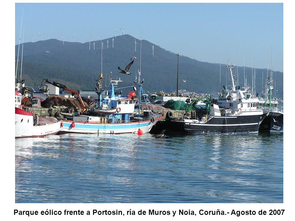 Parque eólico frente a Portosin, ría de Muros y Noia, Coruña.- Agosto de 2007