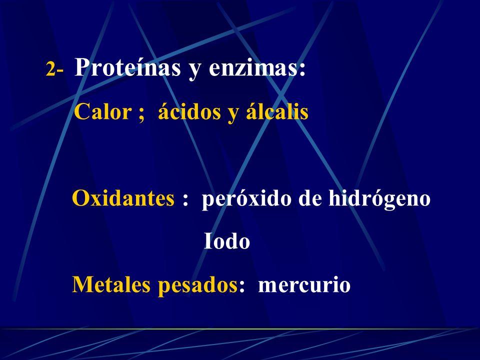 2- Proteínas y enzimas: Calor ; ácidos y álcalis Oxidantes : peróxido de hidrógeno Iodo Metales pesados: mercurio