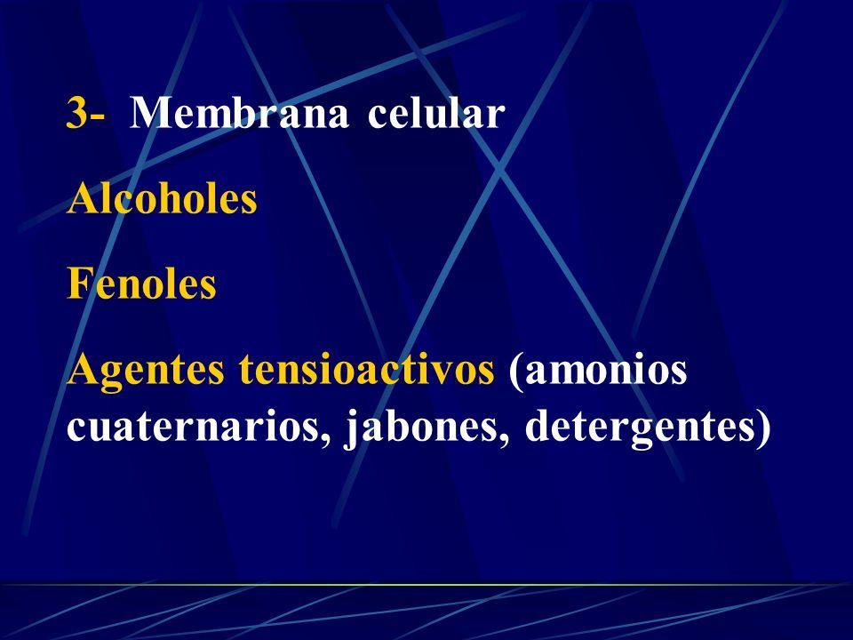 3- Membrana celular Alcoholes Fenoles Agentes tensioactivos (amonios cuaternarios, jabones, detergentes)