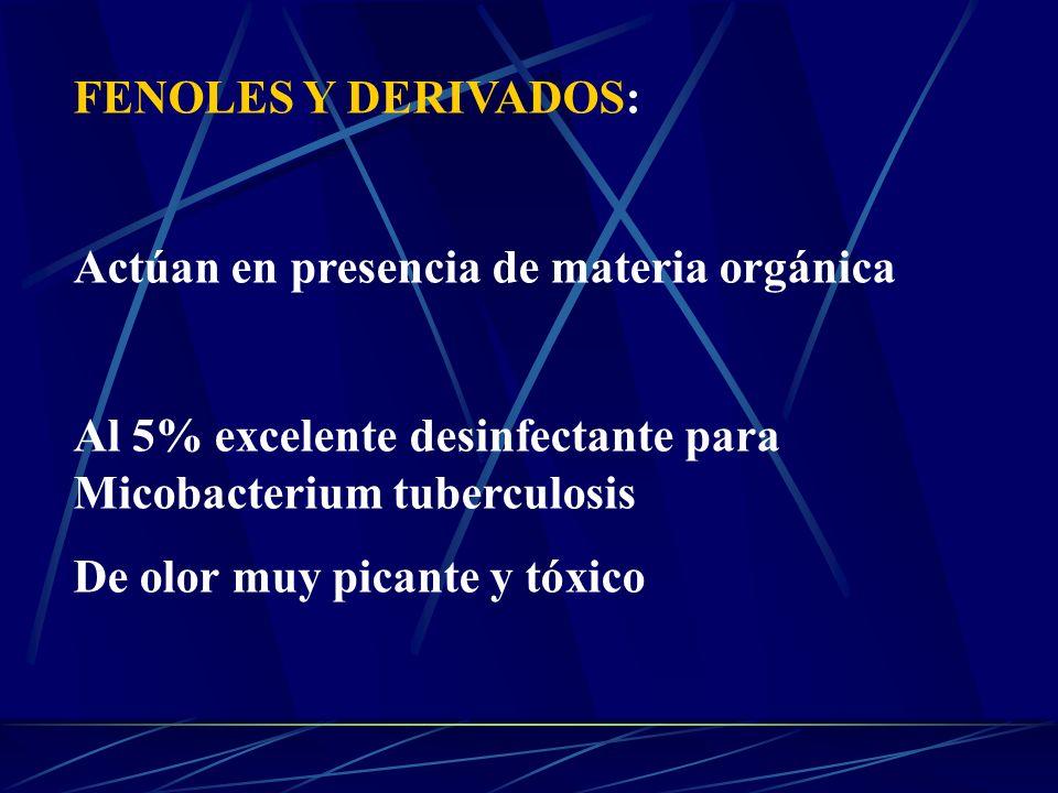 FENOLES Y DERIVADOS: Actúan en presencia de materia orgánica Al 5% excelente desinfectante para Micobacterium tuberculosis De olor muy picante y tóxic
