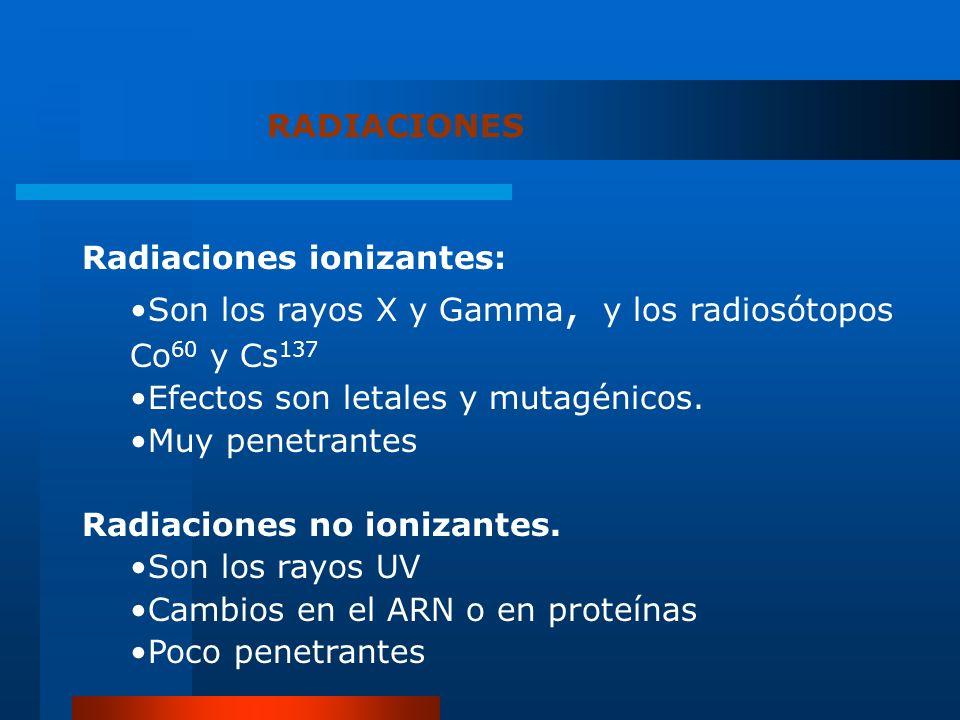 RADIACIONES Radiaciones ionizantes: Son los rayos X y Gamma, y los radiosótopos Co 60 y Cs 137 Efectos son letales y mutagénicos. Muy penetrantes Radi