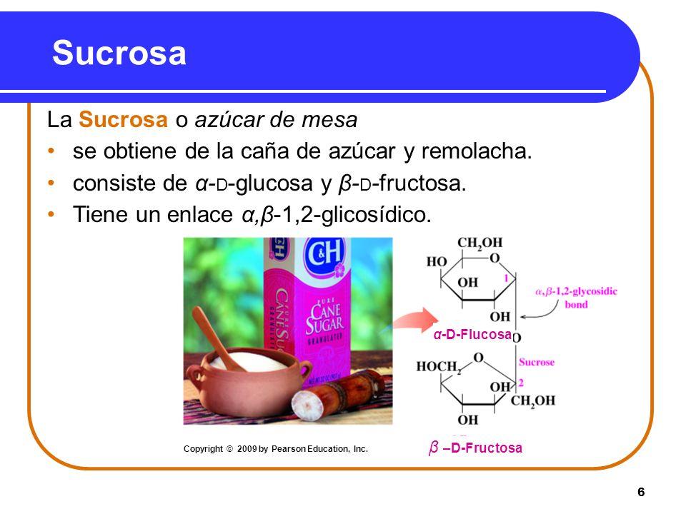 6 Sucrosa La Sucrosa o azúcar de mesa se obtiene de la caña de azúcar y remolacha. consiste de α- D -glucosa y β- D -fructosa. Tiene un enlace α,β-1,2