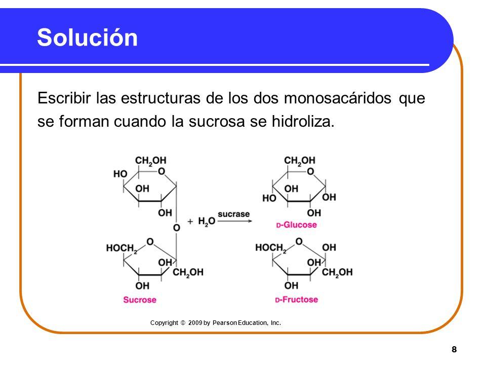 8 Solución Escribir las estructuras de los dos monosacáridos que se forman cuando la sucrosa se hidroliza. Copyright © 2009 by Pearson Education, Inc.