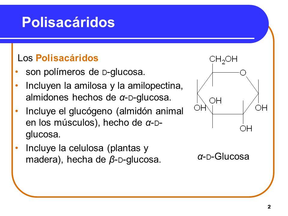 2 Polisacáridos Los Polisacáridos son polímeros de D -glucosa. Incluyen la amilosa y la amilopectina, almidones hechos de α- D -glucosa. Incluye el gl