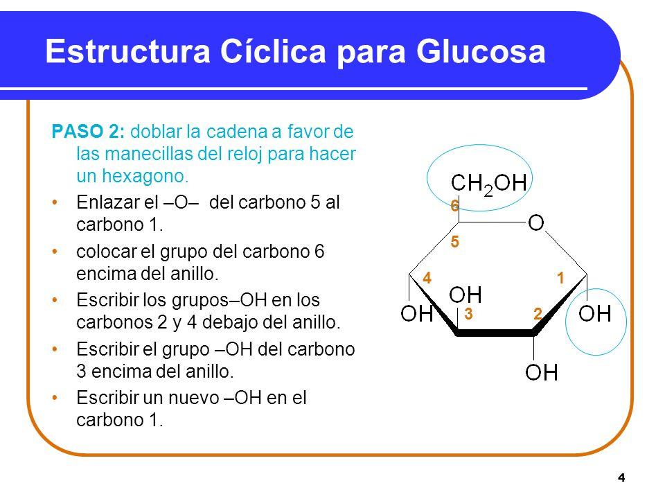 4 Estructura Cíclica para Glucosa PASO 2: doblar la cadena a favor de las manecillas del reloj para hacer un hexagono. Enlazar el –O– del carbono 5 al