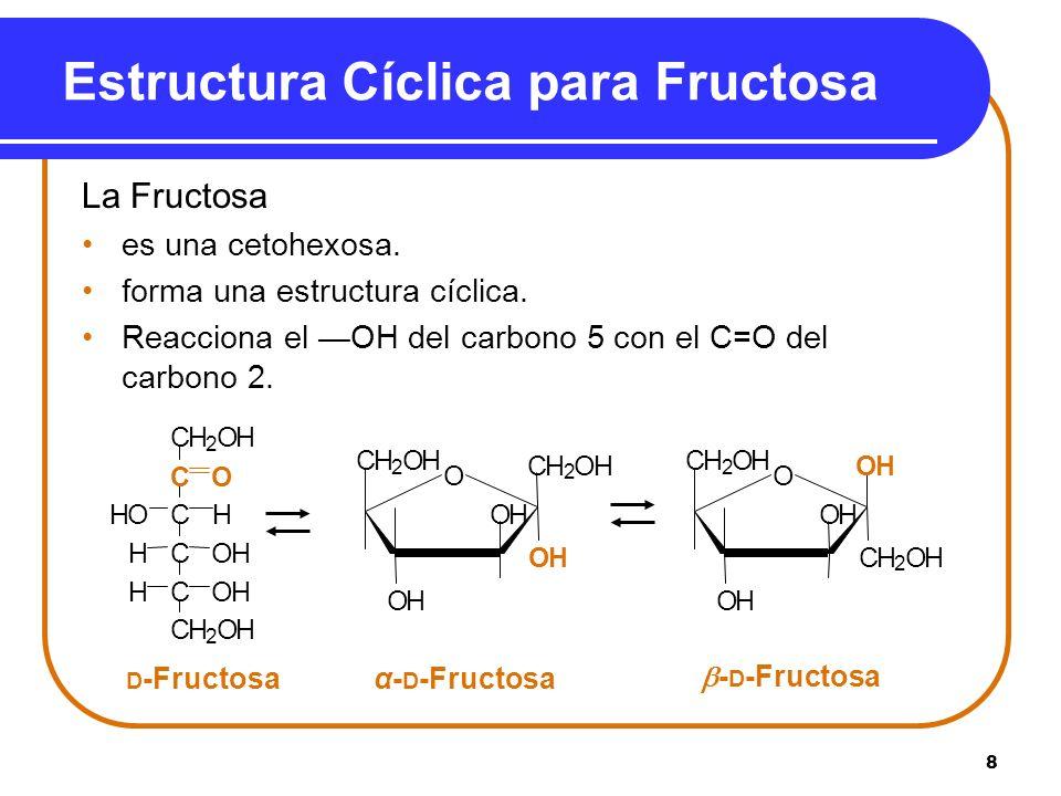 8 Estructura Cíclica para Fructosa La Fructosa es una cetohexosa. forma una estructura cíclica. Reacciona el OH del carbono 5 con el C=O del carbono 2