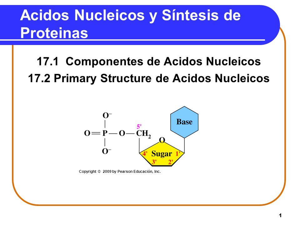 12 Names de nucleósidos y nucleótidos