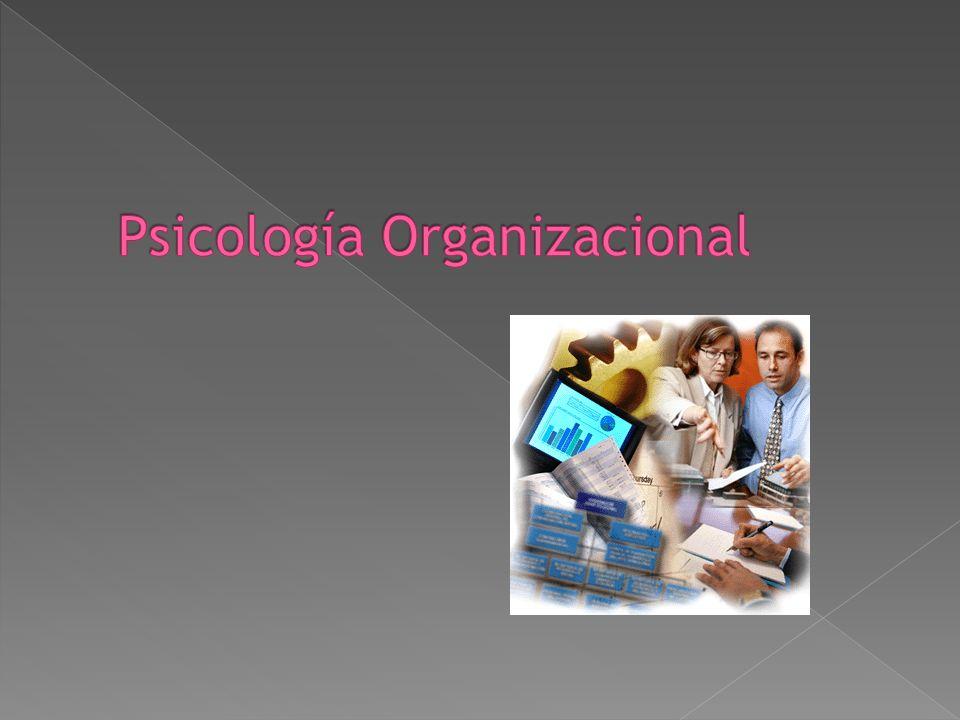Estudia el comportamiento de la persona dentro de los grupos y organizaciones, así como las interrelaciones que se establecen y la modificación, en un
