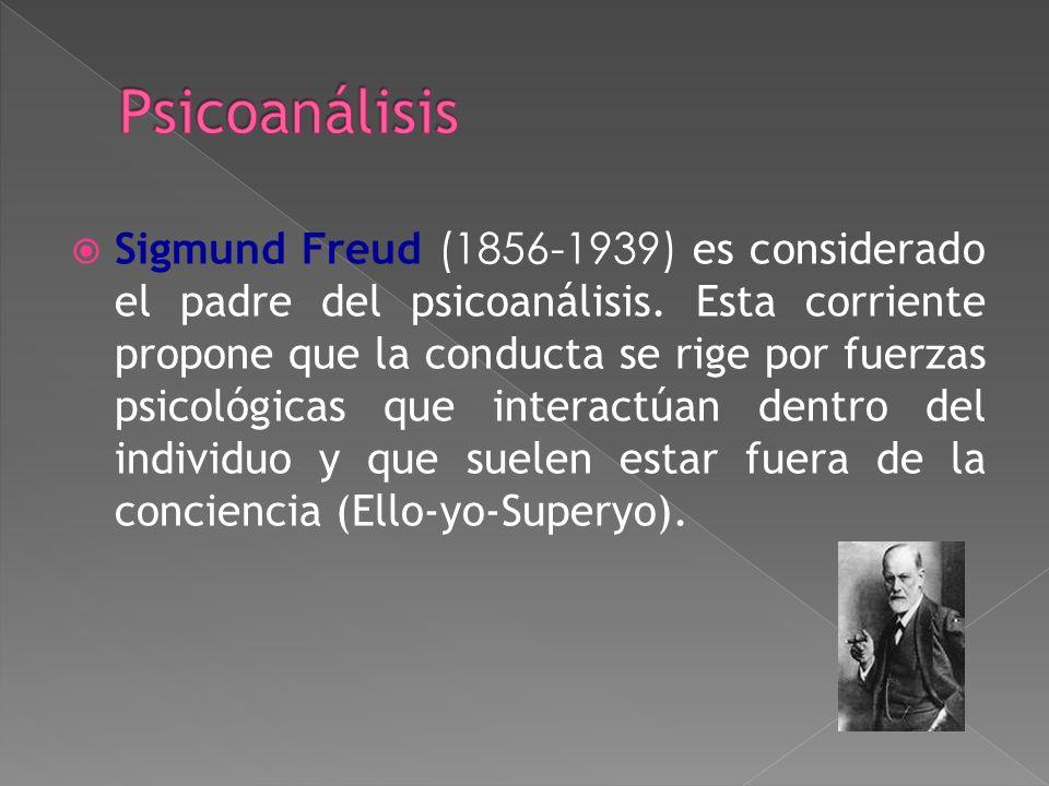 El funcionalismo fue el movimiento más importante en la psicología académica anglosajona y, en muchos sentidos, el precursor del conductismo. Es la es