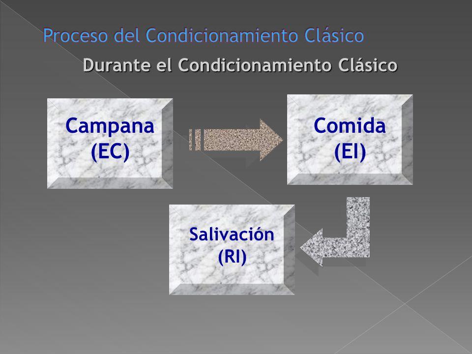 Antes del Condicionamiento Clásico Comida (EI) Salivación (RI) Campana (EC) No hay respuesta