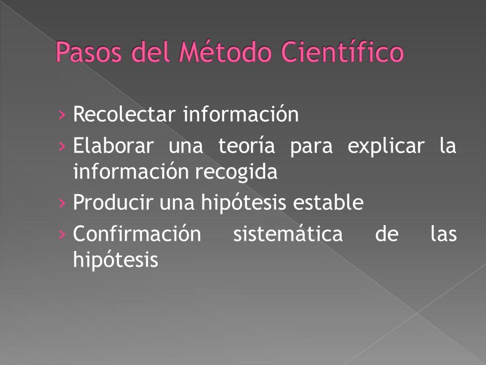 Recolectar información Elaborar una teoría para explicar la información recogida Producir una hipótesis estable Confirmación sistemática de las hipótesis
