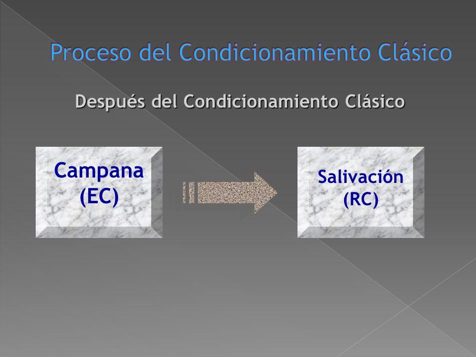 Durante el Condicionamiento Clásico Campana (EC) Comida (EI) Salivación (RI)