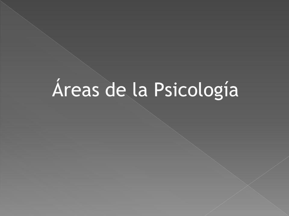 Psicología Social: Estudia la forma en que las personas se influyen entre sí.