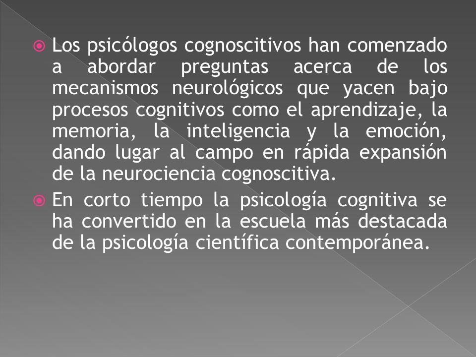 Corriente psicológica que estudia la conducta humana y los procesos mentales de base (pensamientos, sentimientos y estados de conciencia). Se interesa