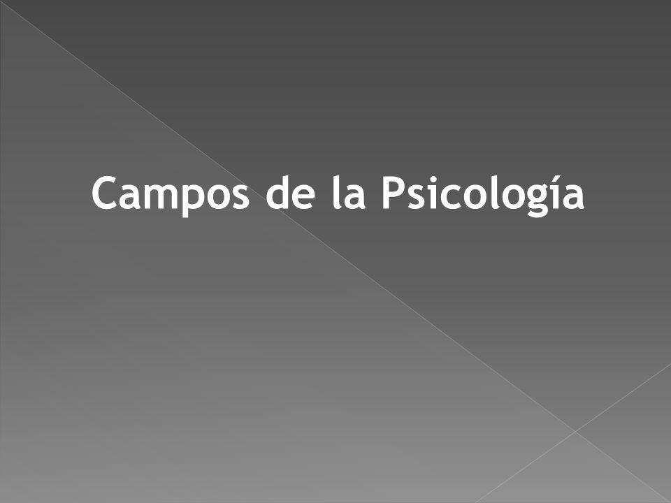 Perspectiva emergente de la psicología que se enfoca en las experiencias positivas, incluyendo el bienestar subjetivo, la autodeterminación, la relaci