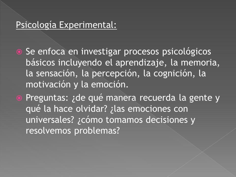 Neurociencia y Psicología Fisiológica: Estudia las bases biológicas de las conductas, los pensamientos y las emociones humanas. Se centra en el efecto