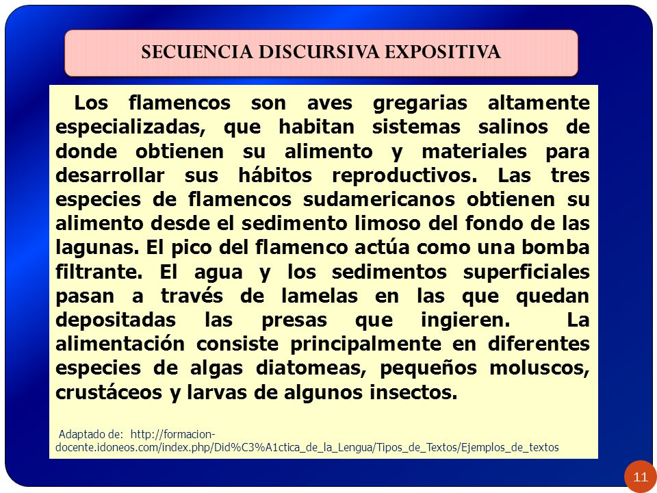 SECUENCIA DISCURSIVA EXPOSITIVA 11 Los flamencos son aves gregarias altamente especializadas, que habitan sistemas salinos de donde obtienen su alimen