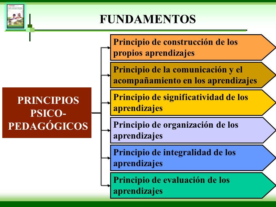 Principio de construcción de los propios aprendizajes PRINCIPIOS PSICO- PEDAGÓGICOS Principio de la comunicación y el acompañamiento en los aprendizaj