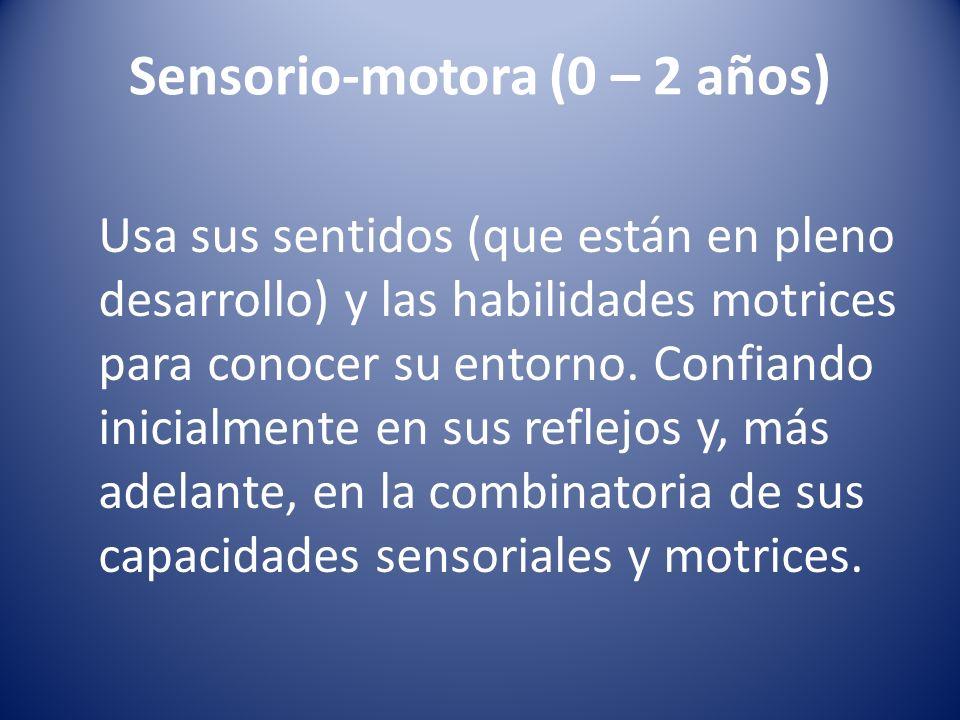 Sensorio-motora (0 – 2 años) Usa sus sentidos (que están en pleno desarrollo) y las habilidades motrices para conocer su entorno. Confiando inicialmen