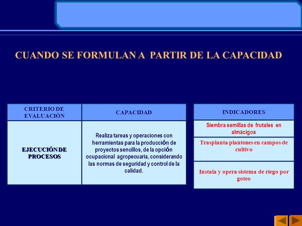 CUANDO SE FORMULAN A PARTIR DE LA CAPACIDAD CRITERIO DE EVALUACIÓN CAPACIDAD EJECUCIÓN DE PROCESOS Realiza tareas y operaciones con herramientas para