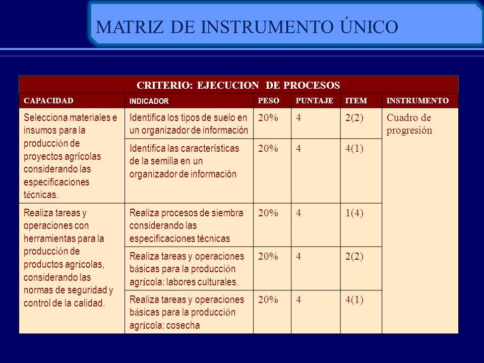 MATRIZ DE INSTRUMENTO ÚNICO CRITERIO: EJECUCION DE PROCESOS CAPACIDADINDICADORPESOPUNTAJEITEMINSTRUMENTO Selecciona materiales e insumos para la produ