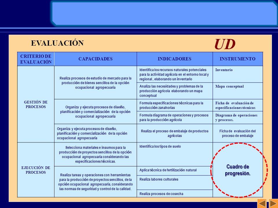 CRITERIO DE EVALUACIÓN CAPACIDADESINDICADORESINSTRUMENTO GESTIÓN DE PROCESOS Realiza procesos de estudio de mercado para la producci ó n de bienes sen
