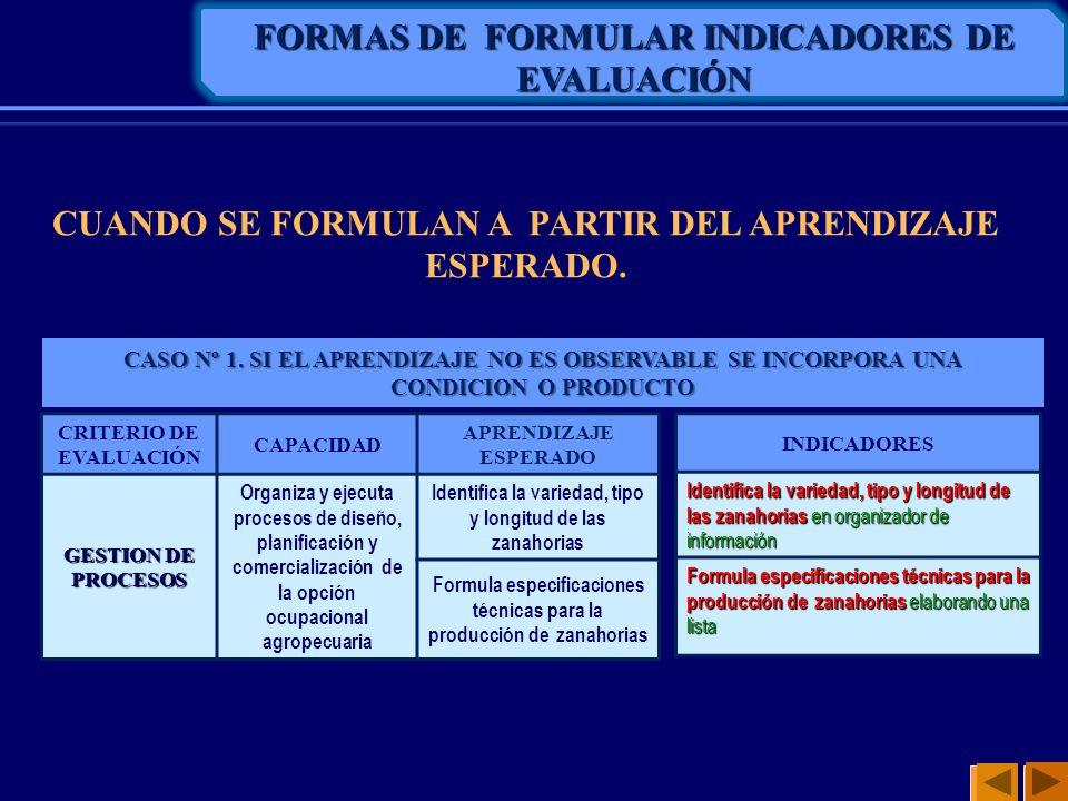 FORMAS DE FORMULAR INDICADORES DE EVALUACIÓN CUANDO SE FORMULAN A PARTIR DEL APRENDIZAJE ESPERADO. CRITERIO DE EVALUACIÓN CAPACIDAD APRENDIZAJE ESPERA