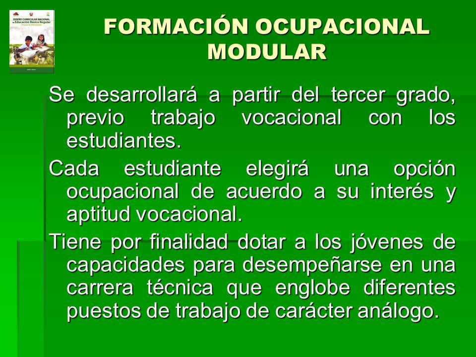 FORMACIÓN OCUPACIONAL MODULAR Se desarrollará a partir del tercer grado, previo trabajo vocacional con los estudiantes. Cada estudiante elegirá una op