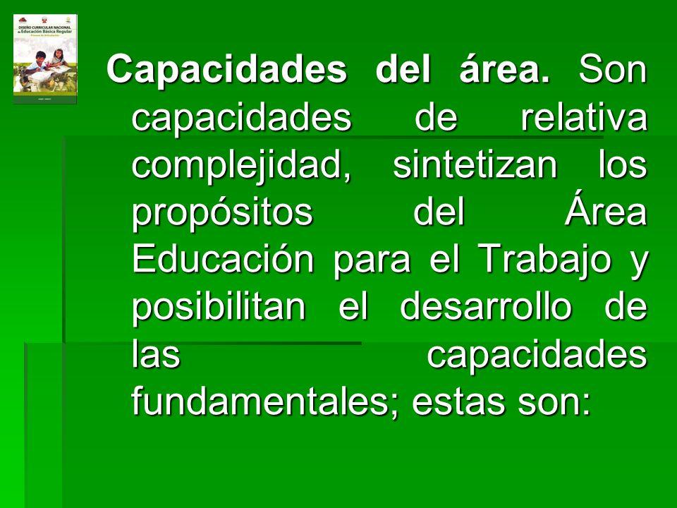 Capacidades del área. Son capacidades de relativa complejidad, sintetizan los propósitos del Área Educación para el Trabajo y posibilitan el desarroll