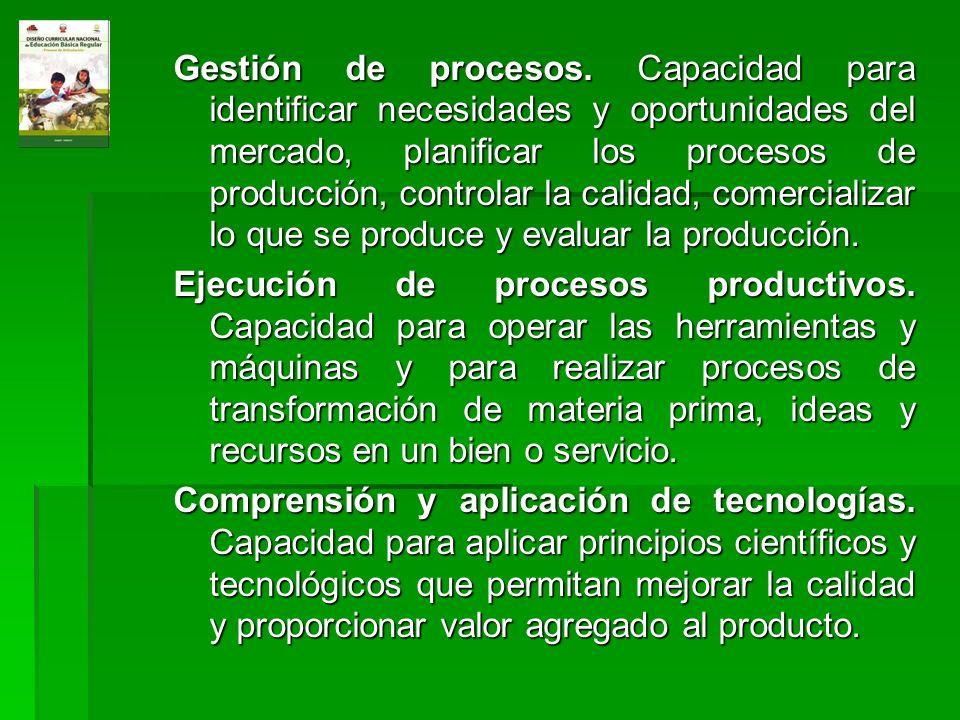 Gestión de procesos. Capacidad para identificar necesidades y oportunidades del mercado, planificar los procesos de producción, controlar la calidad,