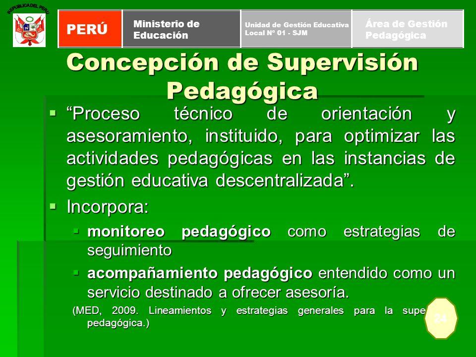 Proceso técnico de orientación y asesoramiento, instituido, para optimizar las actividades pedagógicas en las instancias de gestión educativa descentr