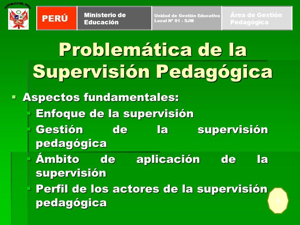 Proceso técnico de orientación y asesoramiento, instituido, para optimizar las actividades pedagógicas en las instancias de gestión educativa descentralizada.